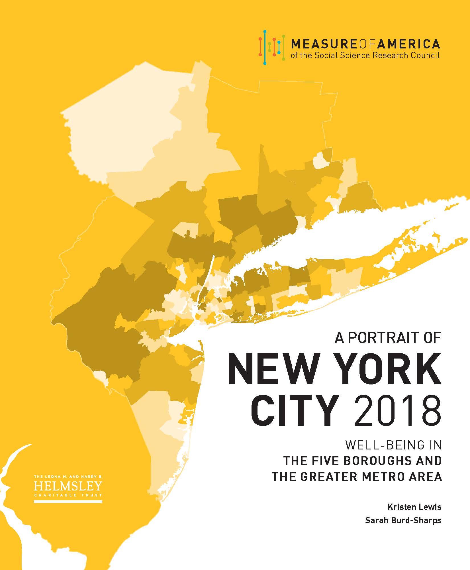 a portrait of new york city 2018 measure of america a program of